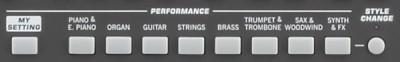 Performance Sektion