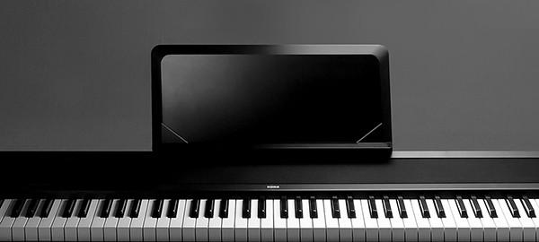 b1 digital piano korg hong kong. Black Bedroom Furniture Sets. Home Design Ideas