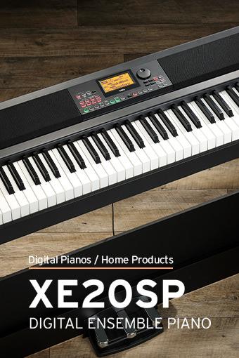 XE20SP