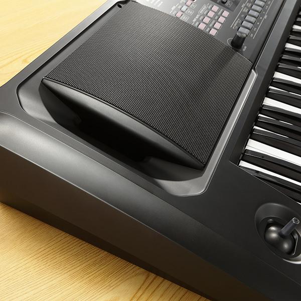 ek-50 built-in speakers